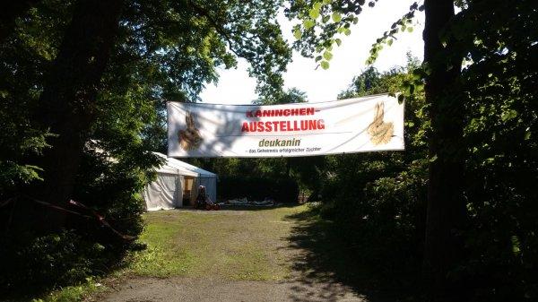image jungtierschau1017-8-jpg