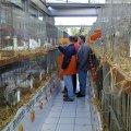 image ortsschau2005_12-jpg